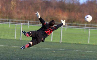 Flying Krol…..